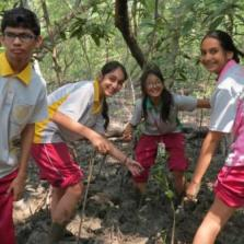Community service Tree Planting 14-3-18